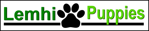 Lemhi Puppies web logo